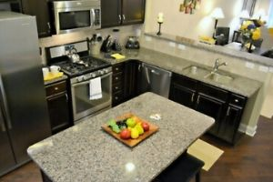 Peak Suites kitchen with island counter top, dark cabinets, and stainless steel appliances